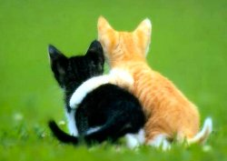 two-friends